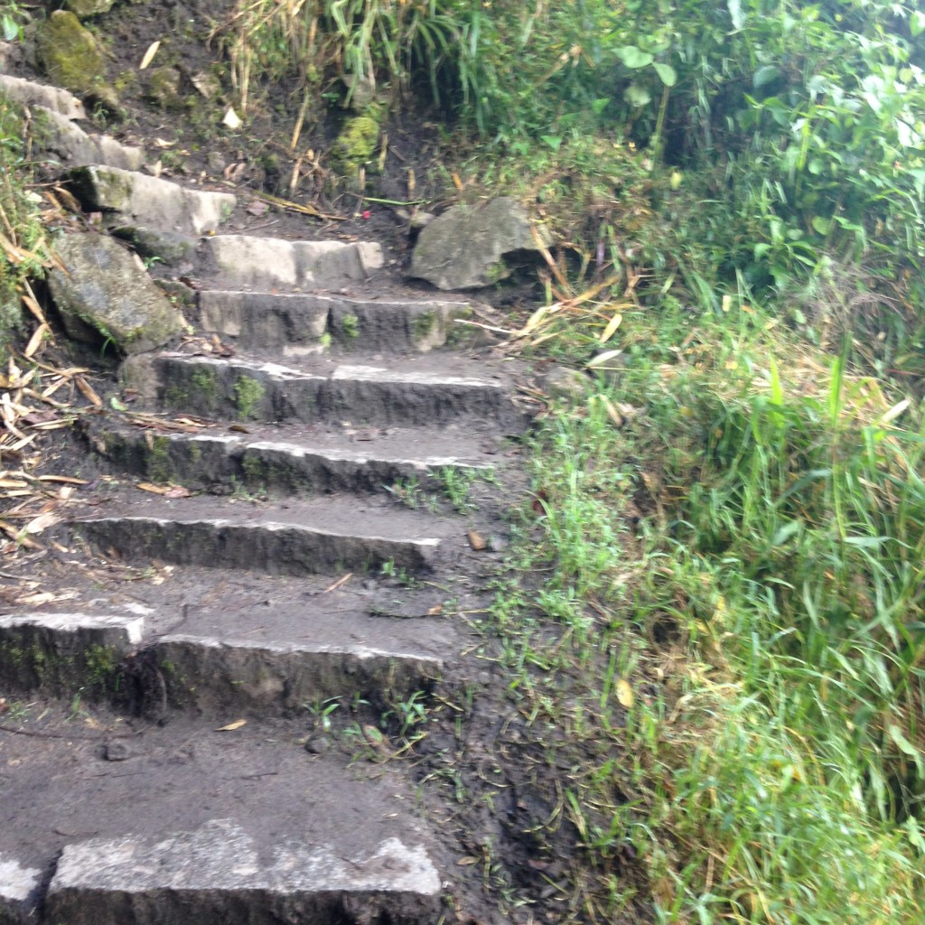 The never-ending staircase doesn't faze us! Bring it, Incan Trail!